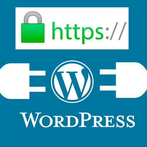 Activar certificado SSL en WordPress